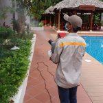 Công ty xịt thuốc diệt muỗi ở An Giang