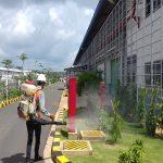 Đơn vị phun thuốc diệt côn trùng tại Đồng Tháp