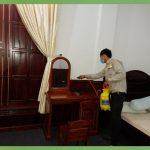 Công ty diệt mối tại nhà ở Đồng Nai
