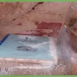 Công ty diệt mối tận gốc tại Tây Ninh