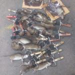 Công ty diệt chuột giá rẻ Quảng Ngãi – Diệt muỗi, chuột