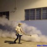 Dịch vụ diệt côn trùng ở Long An