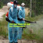 Dịch vụ diệt côn trùng tại Phú Quốc