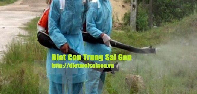 Dich-vu-phun-diet-muoi-tai-Ba-Ria-Vung-Tau