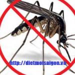Dịch vụ phun diệt muỗi tại Bình Dương