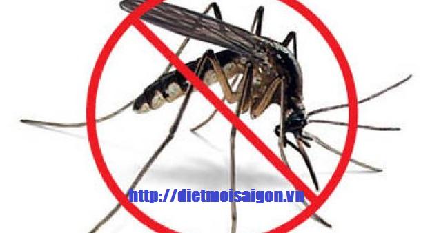 Phun thuốc diệt muỗi