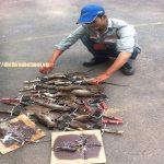 Công ty diệt chuột tại Hà Nam