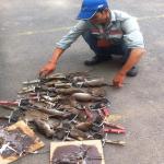Dịch vụ diệt chuột tại An Giang