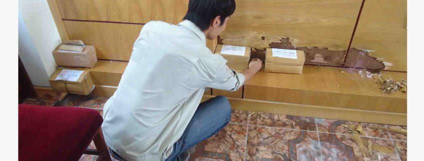 Công Ty Diệt Mối tại Bắc Giang
