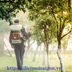 Dịch vụ diệt côn trùng Đà Nẵng – Diệt mối, gián, kiến