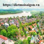 Công ty diệt chuột tỉnh Phú Thọ – Diệt muỗi, mối