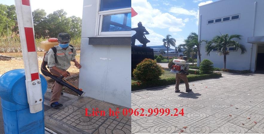 Dịch vụ diệt muỗi hiệu quả TP.HCM