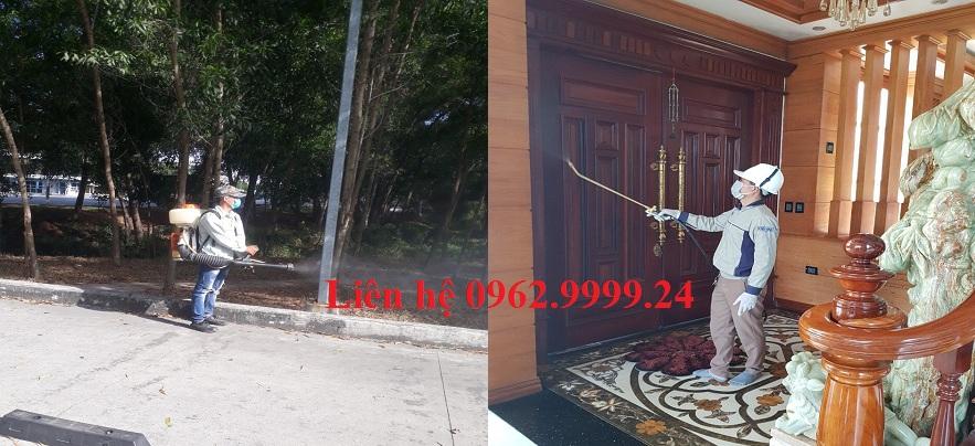 Công ty diệt côn trùng Đồng Nai