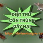 Công ty diệt côn trùng Đồng Nai – Diệt mối, muỗi