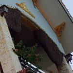 Đội xử lý ong nhanh tại Hà Nội