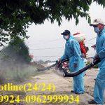 Dịch vụ diệt côn trùng-Xử lý muỗi chuyên nghiệp tại Quận 9