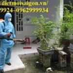 Dịch vụ diệt muỗi-Kiểm soát muỗi uy tín tại Củ Chi