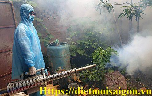 Phun diệt côn trùng, muỗi, ruồi, kiến, gián,....tại Hồ Chí Minh