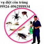 Trung tâm kiểm soát côn trùng chuyên nghiệp tại Quận 4
