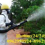 Cơ sở diệt côn trùng, muỗi chuyên nghiệp hàng đầu tại Quận 2