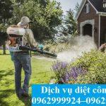 Dịch vụ diệt muỗi chất lượng-giá rẻ tại Quận 5