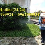 Công ty phun diệt côn trùng-muỗi an toàn tại Tân Phú